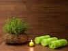 Wellness Astoria Bled DEUS TRAVEL (12)