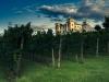 Wine-CastleDobrovo _Goriska_Brda-PhotoSTB-ZTKMSBrda